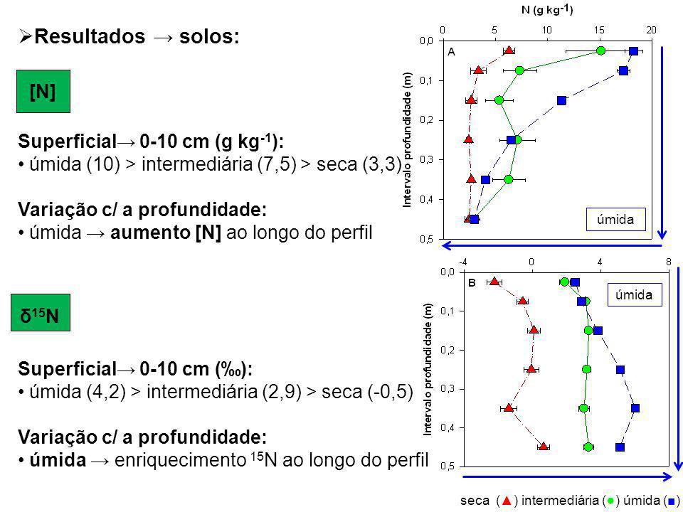 Resultados → solos: [N] Superficial→ 0-10 cm (g kg-1):